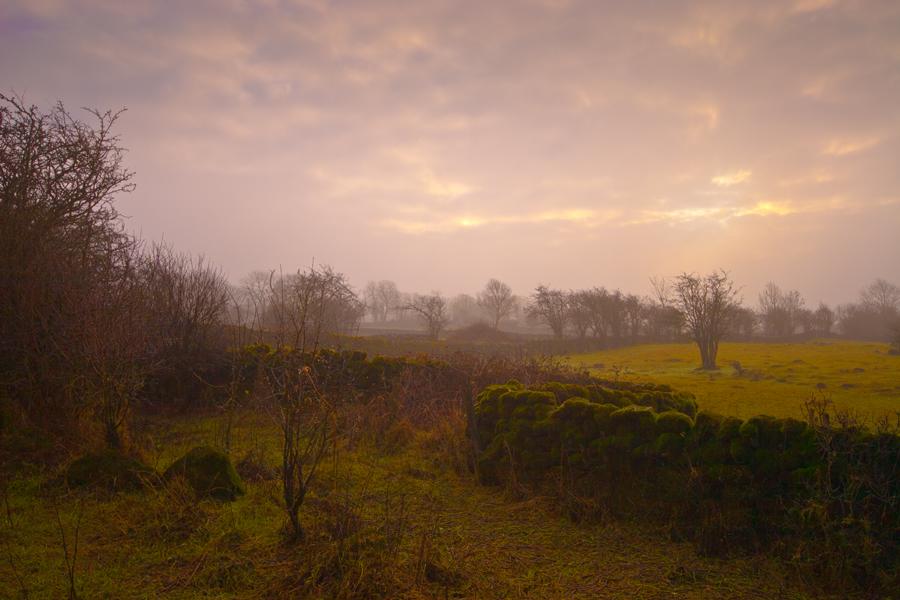 16_landscapes14-1_o.jpg