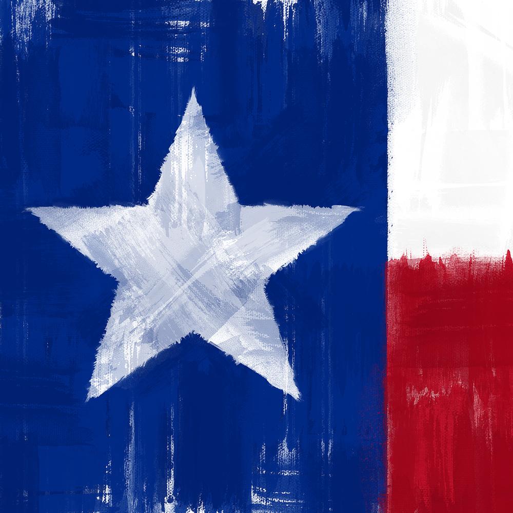 TX Flag.jpg