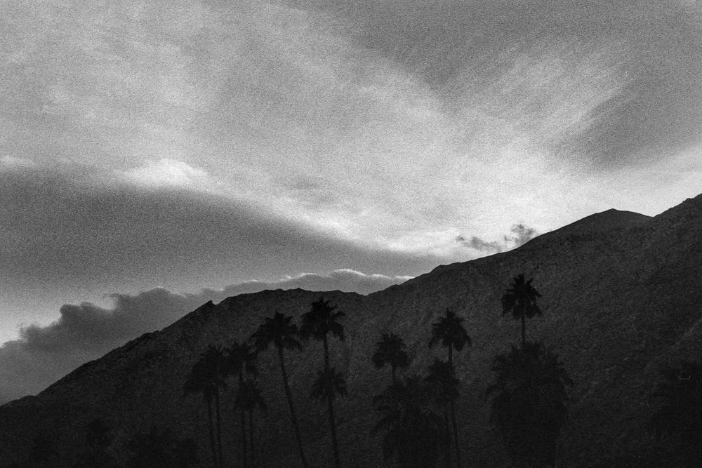Palm Springs Borders