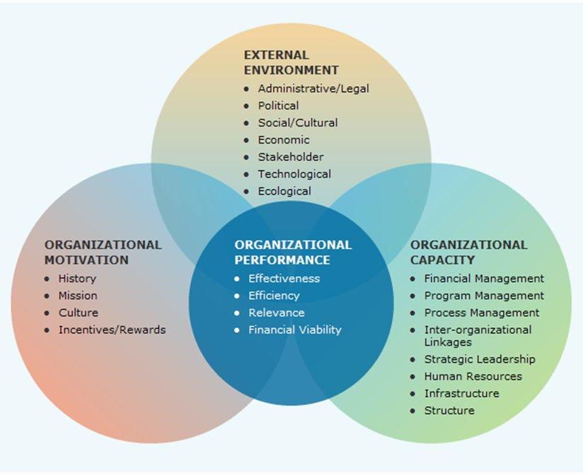logical organization in essays