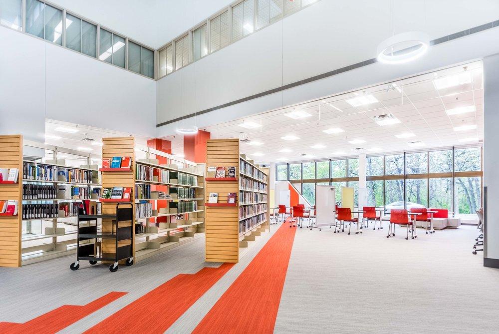 drake library mmp web 2017.jpg