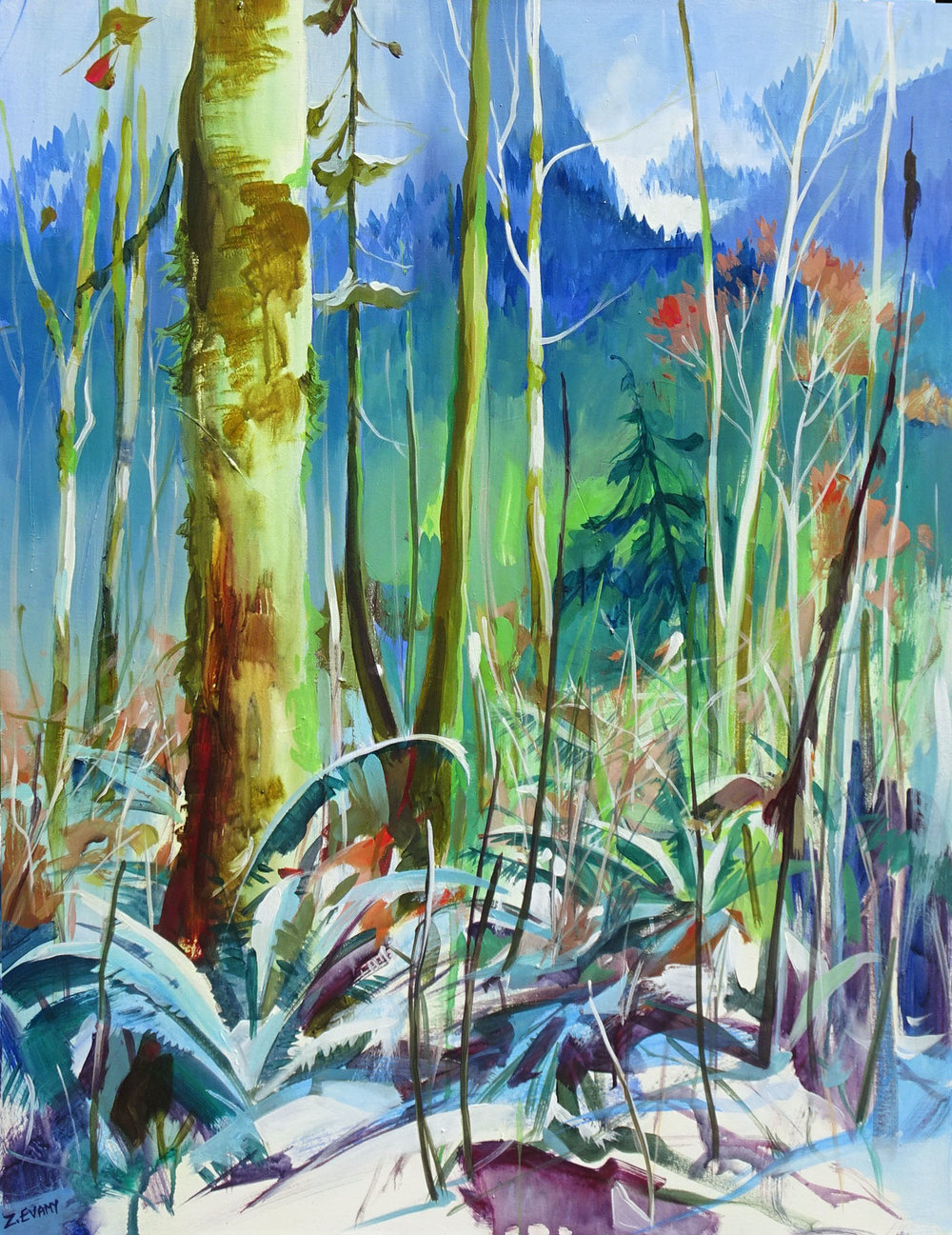 Woodland The coastal rainforest is one of my favourite painting is one of my favourite subjects, the temporate rainforest. This one is at the foot of a glacier in Squamish Valley.