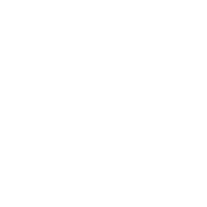 phone icon white.png