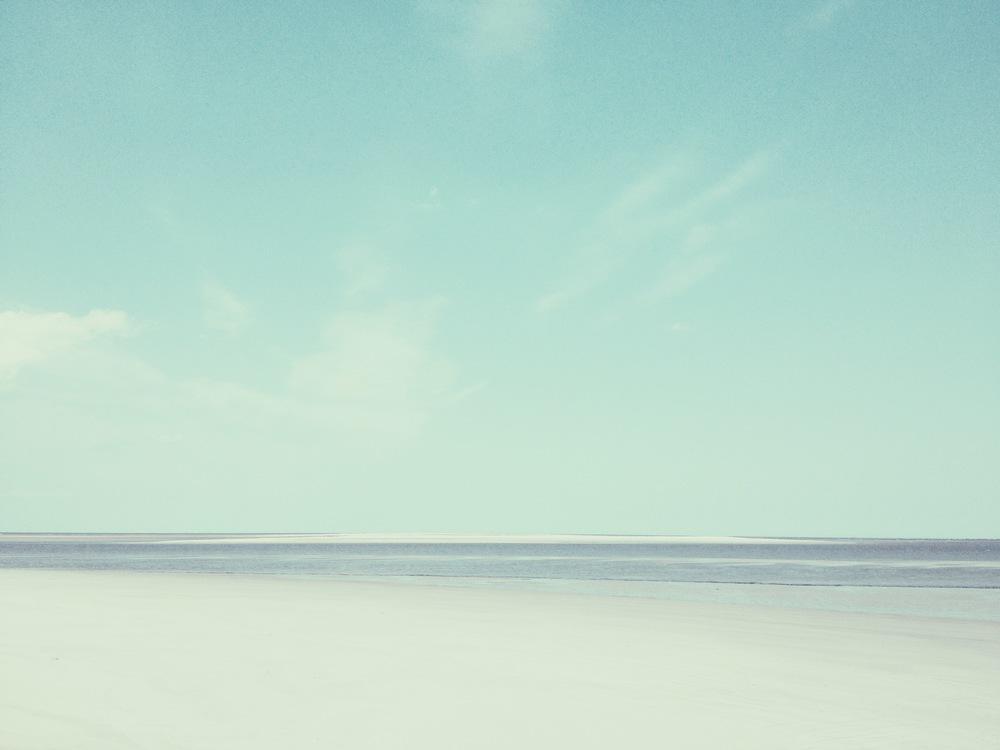 Sandbar /St. Catherine's Island, Georgia 2014 ©Manda Faye Dunigan