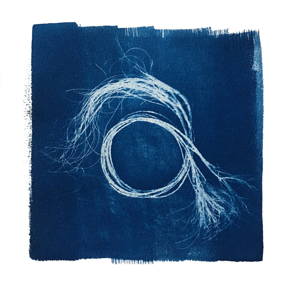 "TITLE /  Plaited Sabal Minor, No. 2  MEDIUM /  Cyanotype Print, Printed on 100% Cotton Paper  SIZE /  9"" x 9""  PRICE /  $275.00"