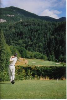 scott-young-golfing-usa.jpeg