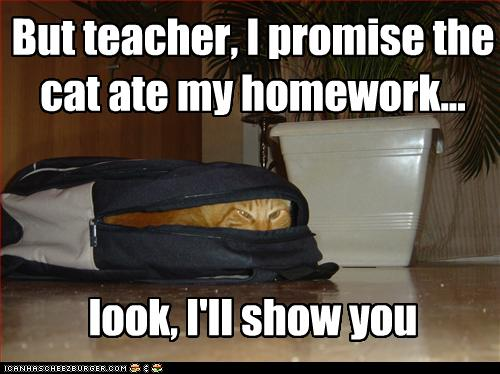 cat-ate-my-homework-.jpg