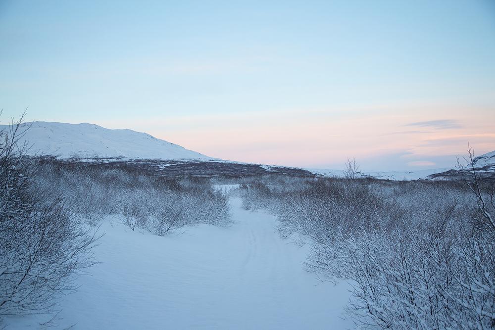 Iceland for web-18.jpg