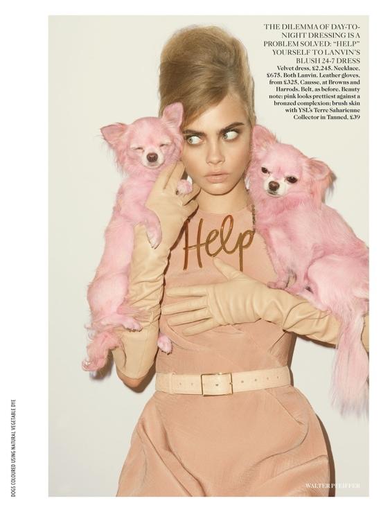 blush pink 9.jpg