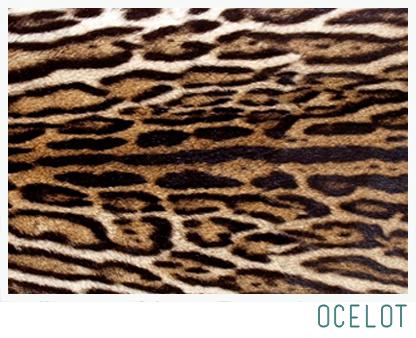 ocelot spots