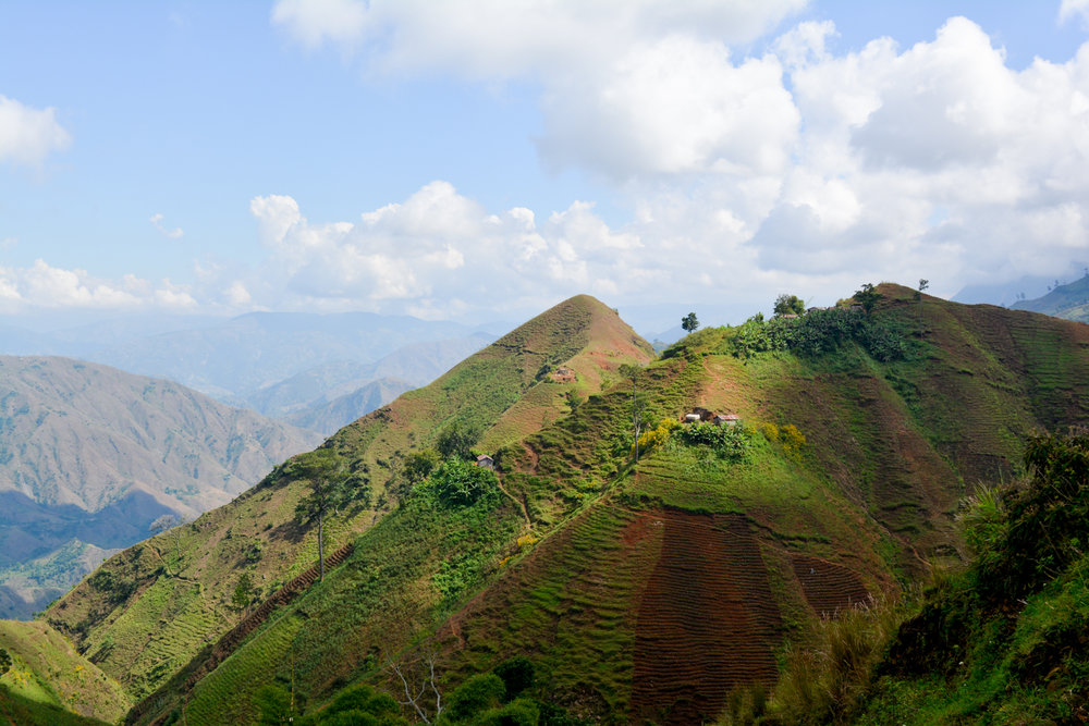 More mountainous than Switzerland, Haiti has a limited amount of cultivable land. Despite this,a large portion of Haiti's most prosperous farmlands are way up here.
