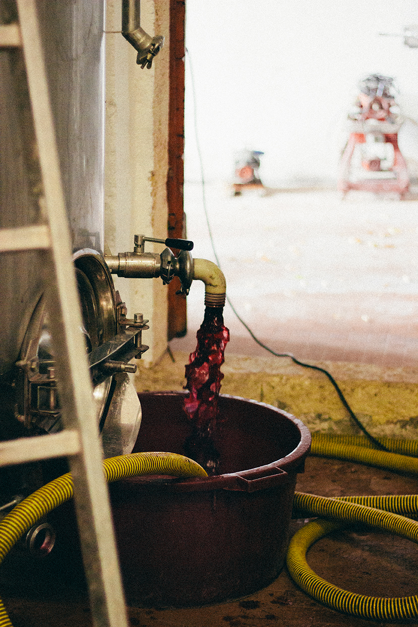 wine-mansanellofarm.jpg