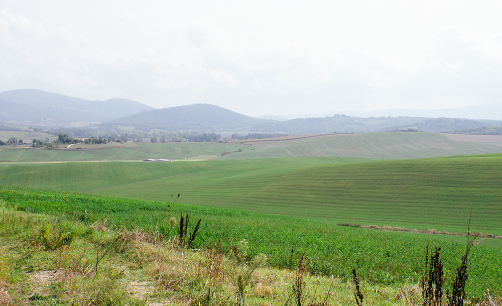 View from the Mensanello farm.