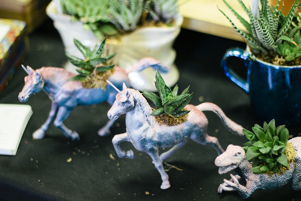 Whimsical succulents by  O'Berry's Succulents