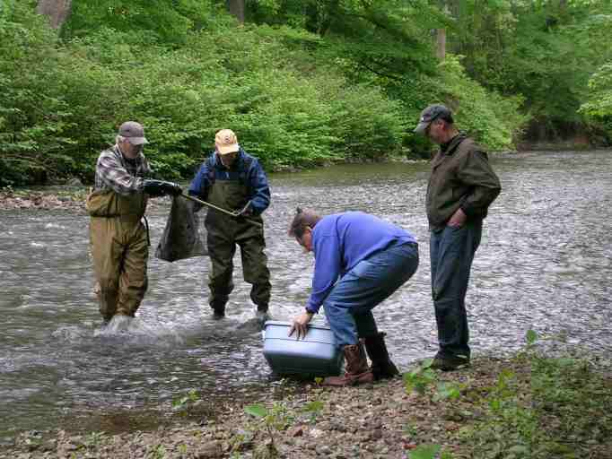Members seining the Whippany River during an invertebre count