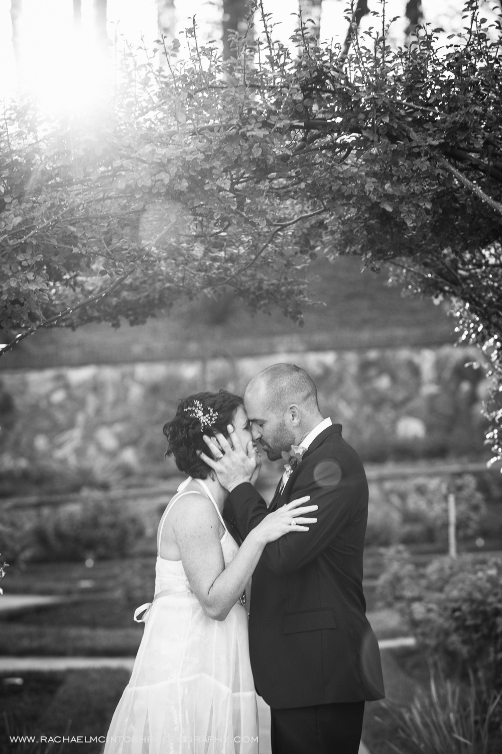 Asheville Wedding Photographer -2014 in review-21.jpg
