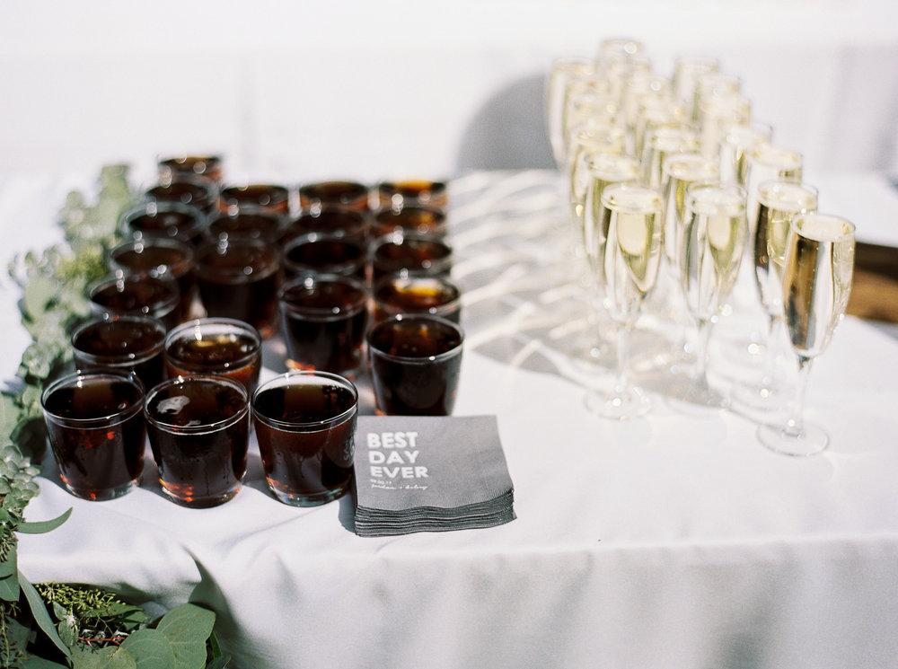 Wedding-at-Brevard-music-center-1-23.jpg