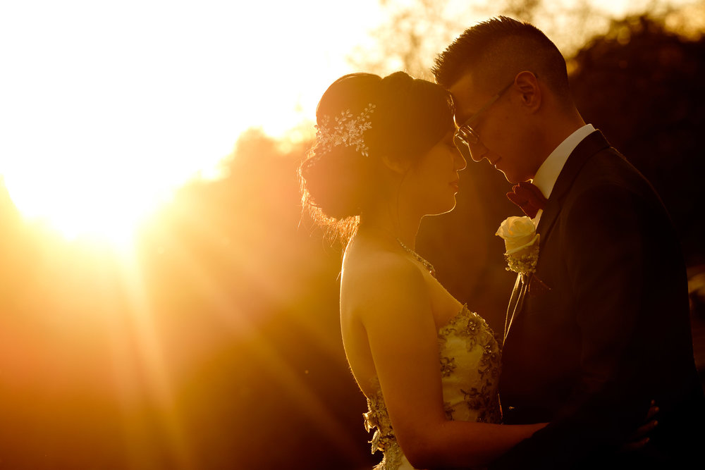 A sunset wedding portrait of Andrea and Chris from their wedding at Madsen's Greenhouse just north of Toronto.