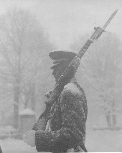 I have nothing but admiration for the men who guard the Tomb of the Unknowns Soldiers, regardless of the weather!