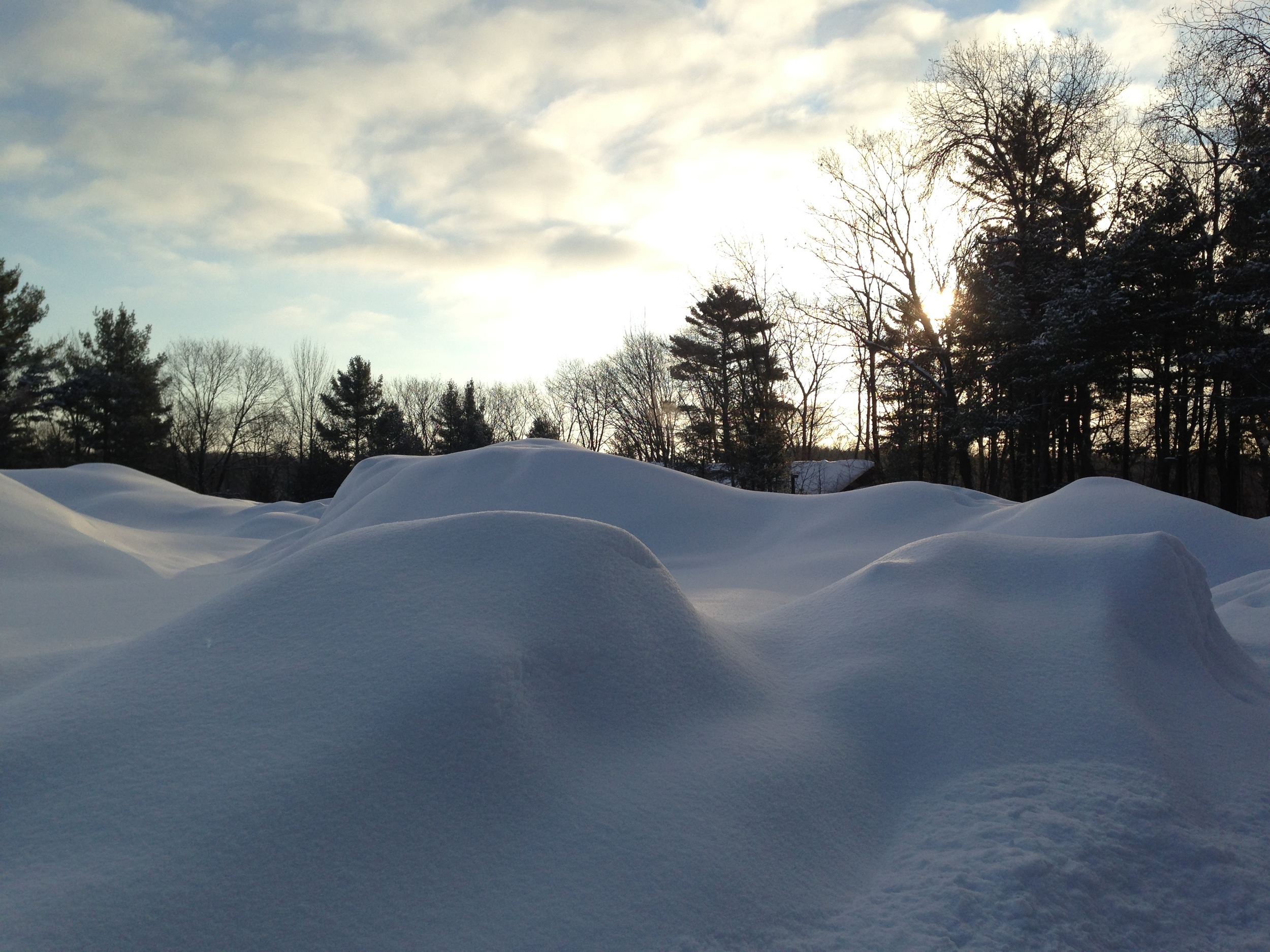 Mountains of snow that accumulated during our first full Michigan winter!