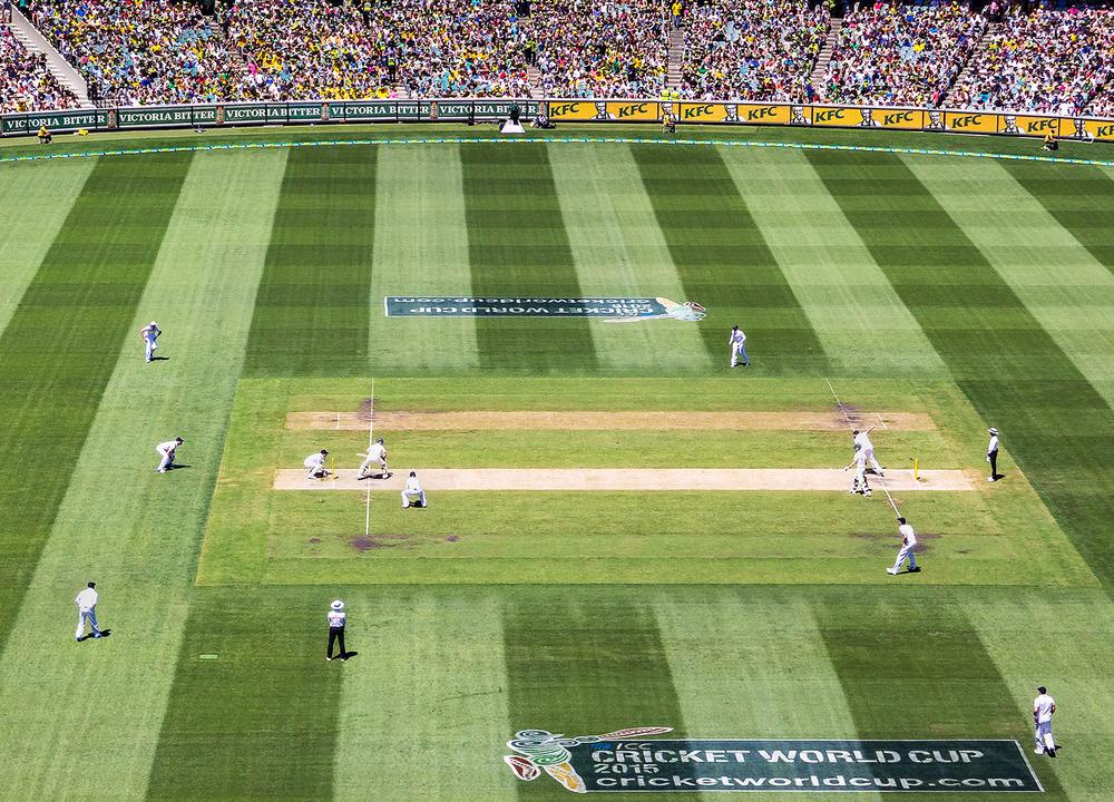 20131327 Cricket (3).jpg
