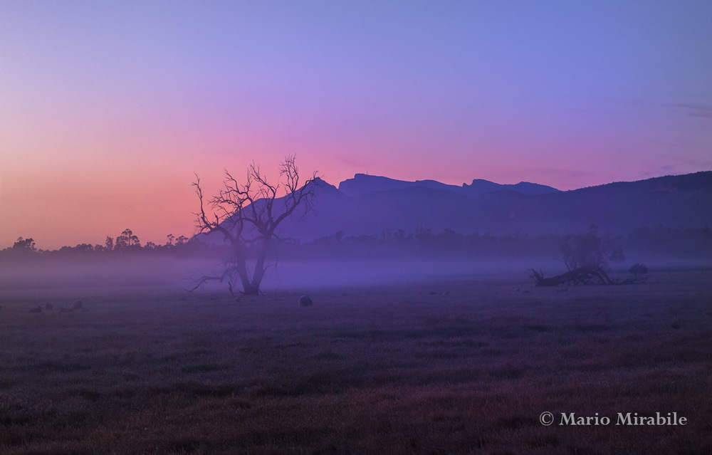 Halls Gap dawn 1 copy.jpg