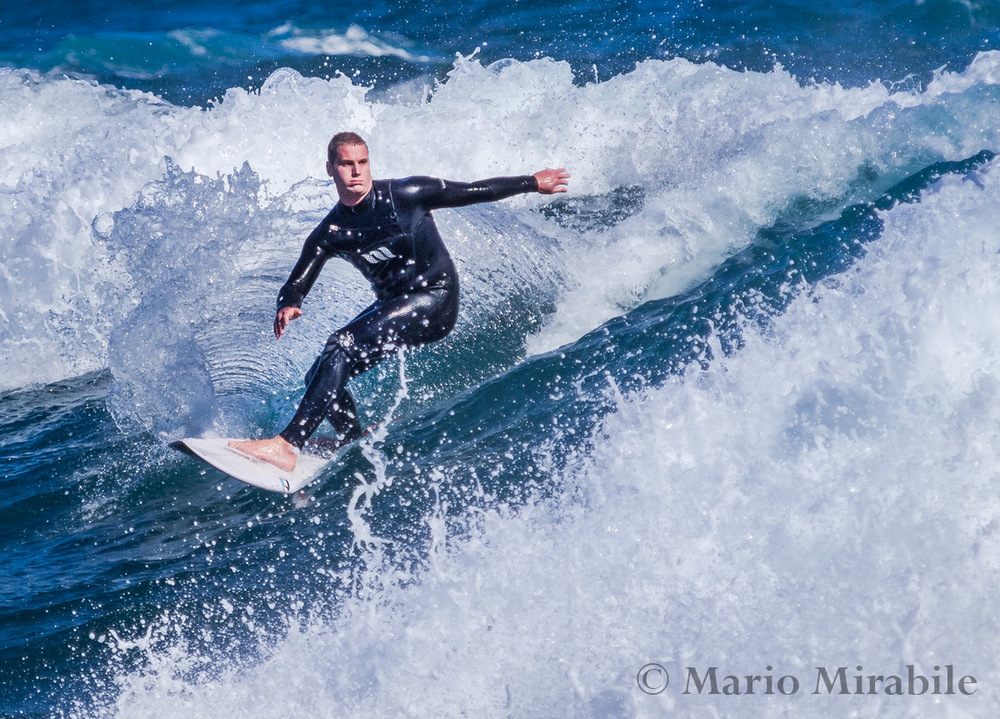20141109  Surfs up (6) copy.jpg