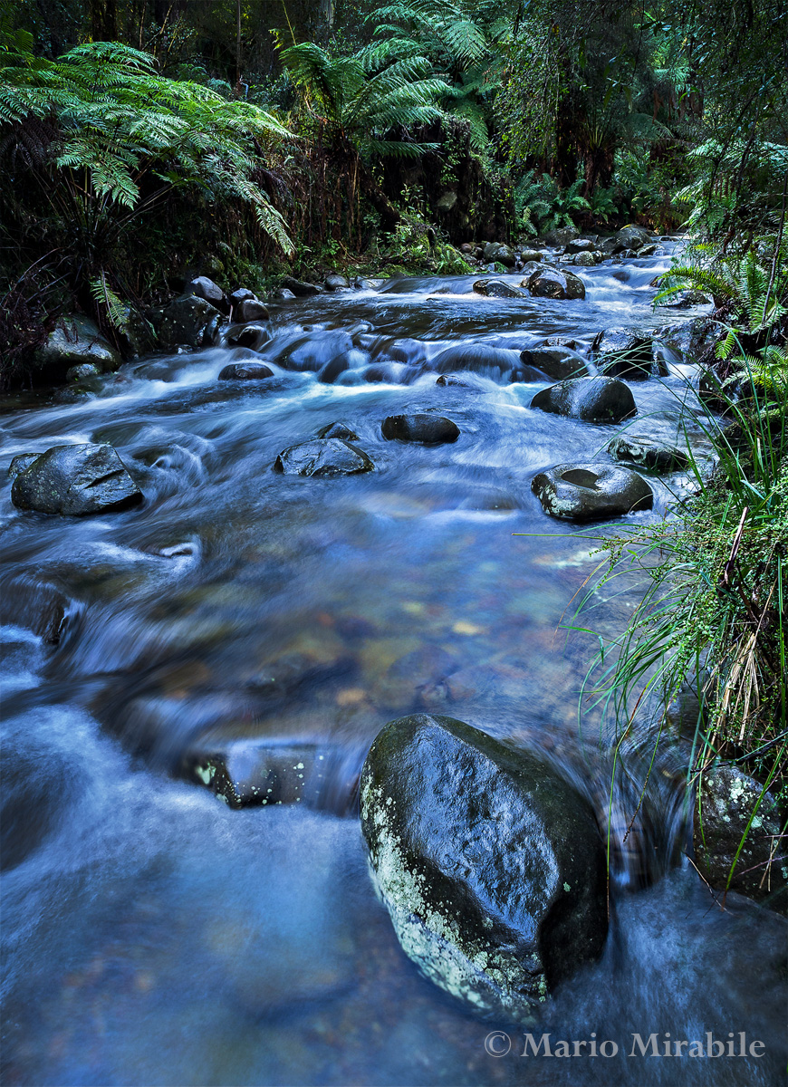 Badger creek blended copy.jpg