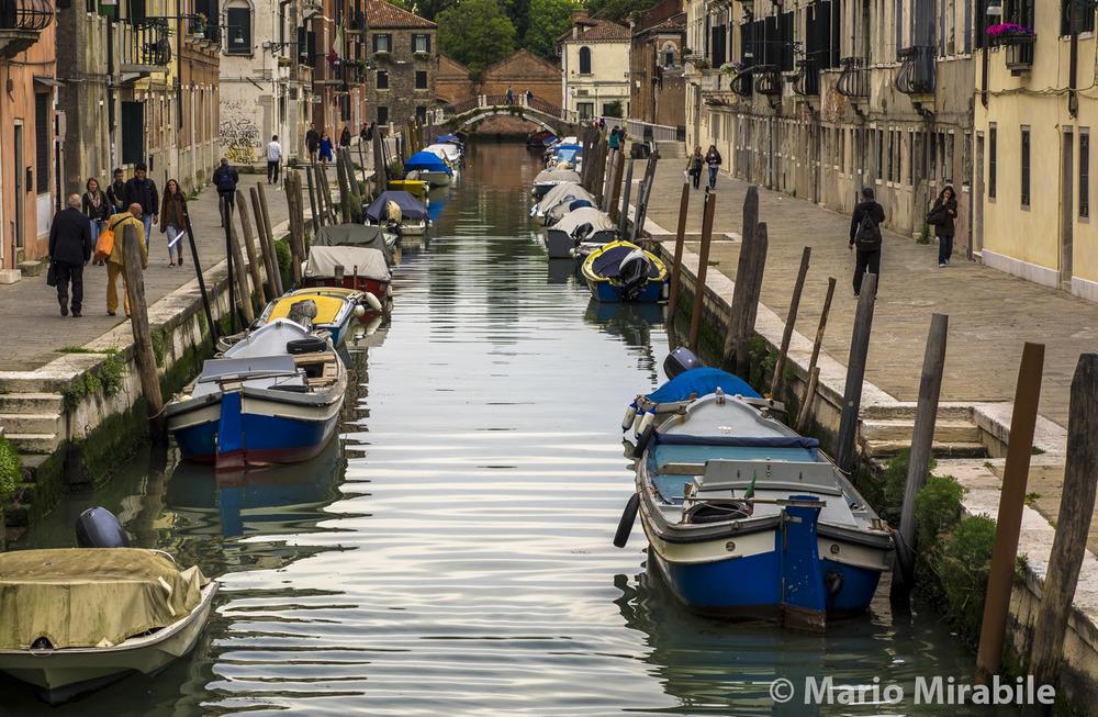20160510 Venice (1) copy.jpg