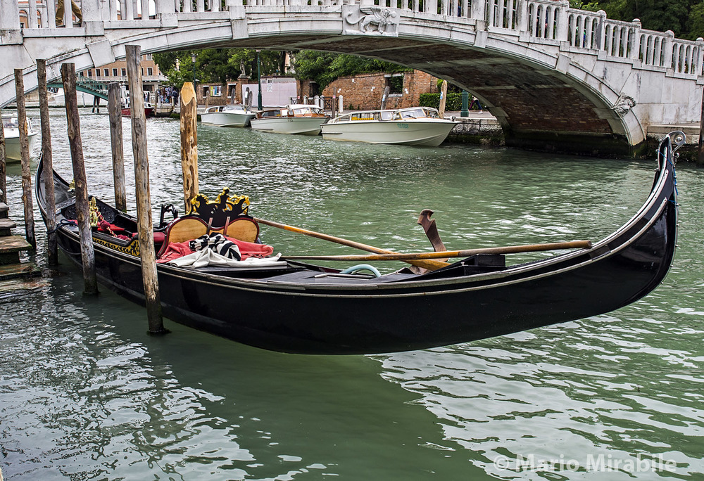 20160509 Venice (5) copy.jpg
