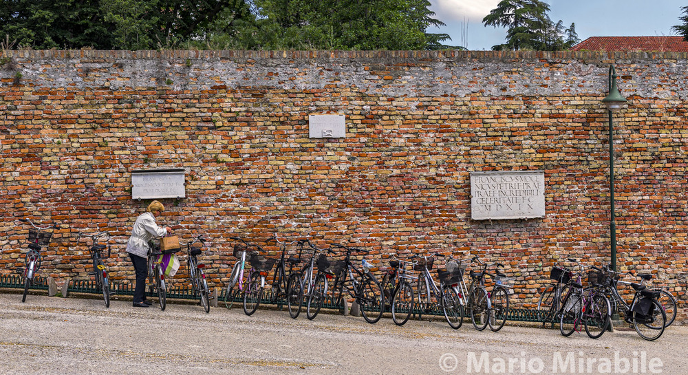 Walls of Treviso1 copy.jpg