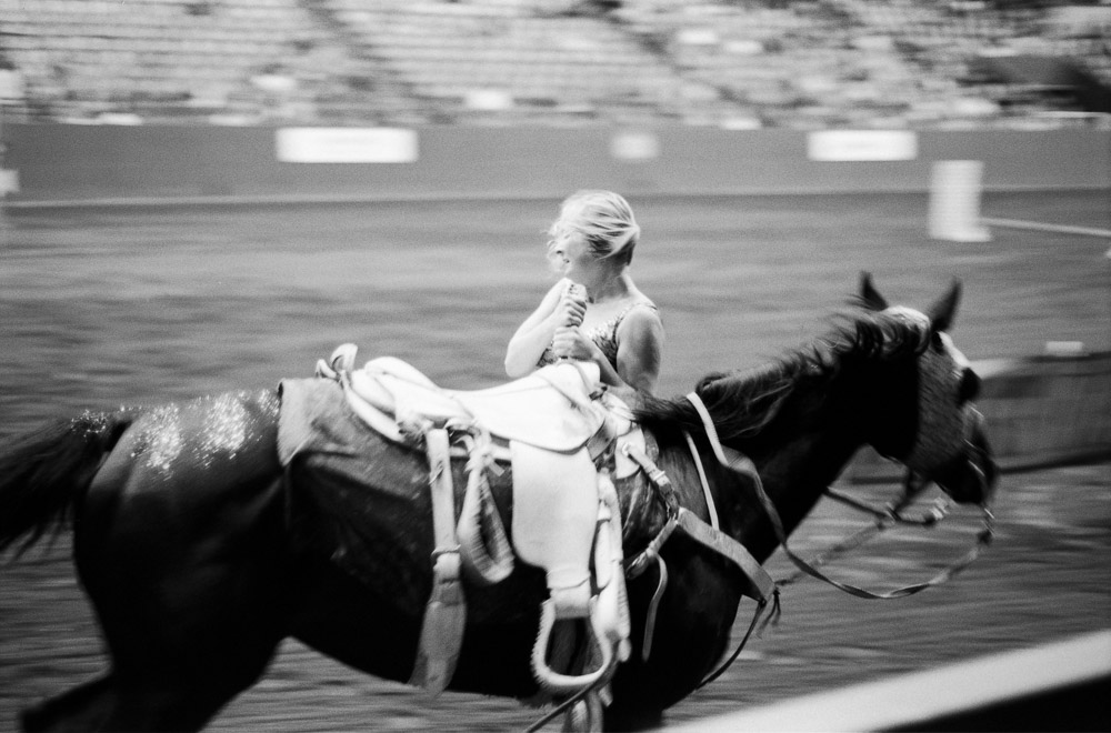 Elegance of Horses-6.jpg