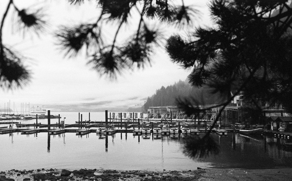 Lighthouse-Park-Vancouver-13.jpg