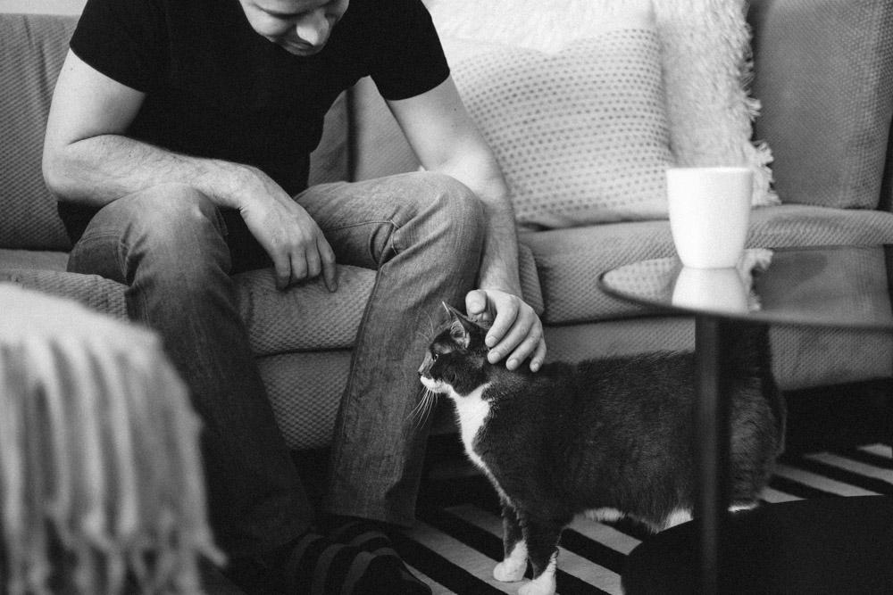 Tallie The Cat-16.jpg