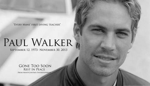 Paul-Walker-RIP-500x287.jpg