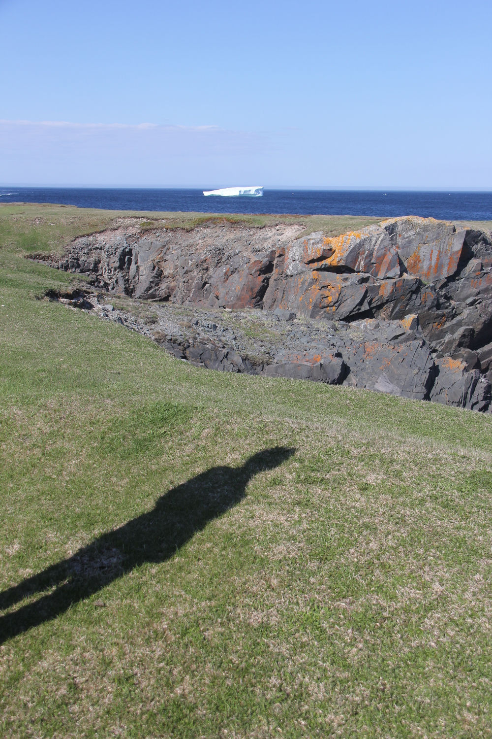 bonavista_shadow.jpg