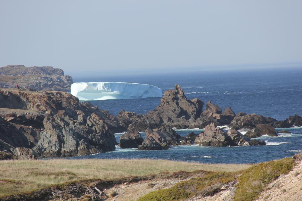 bona_iceberg.jpg
