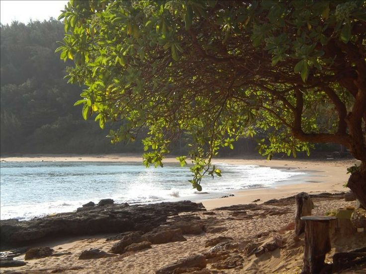 moloaa beach.jpg