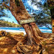 Moloaa Bay 2.jpg