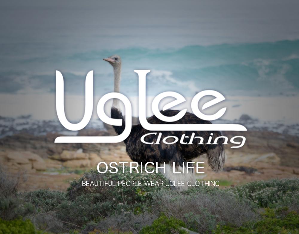 ostrich beach.jpg
