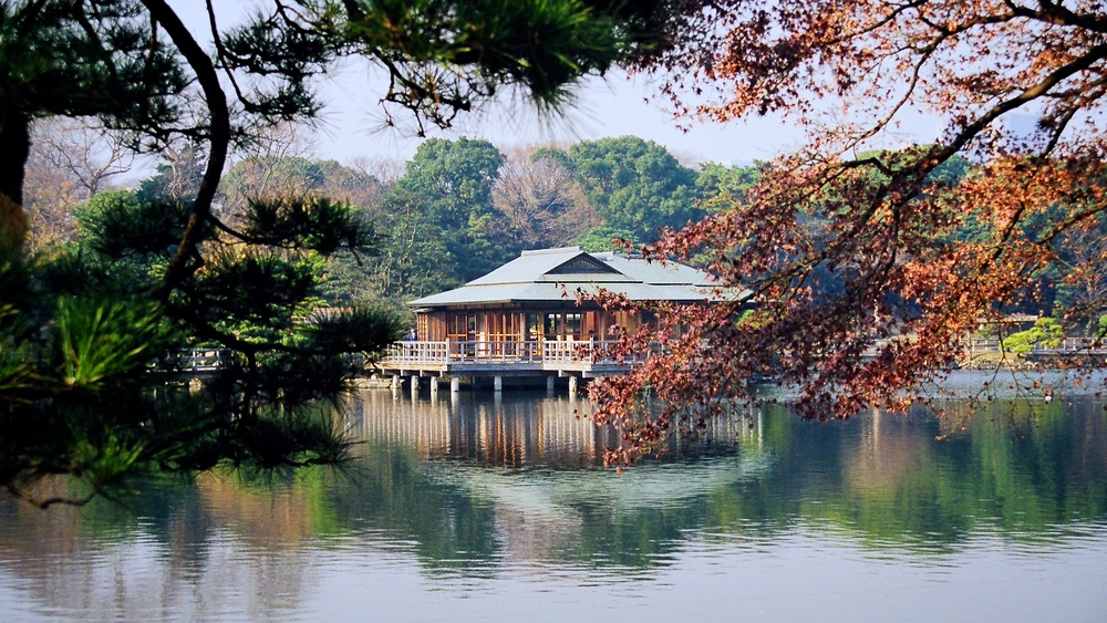 Reflection In Japan | Hama-Rikyu Gardens