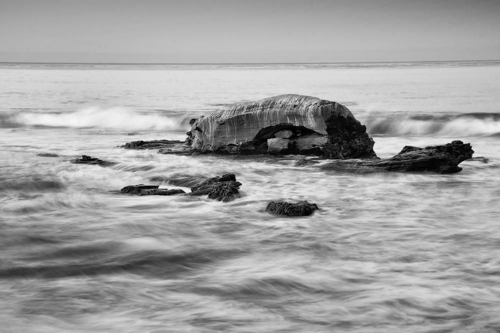 Bird Rock| Black & White Gallery