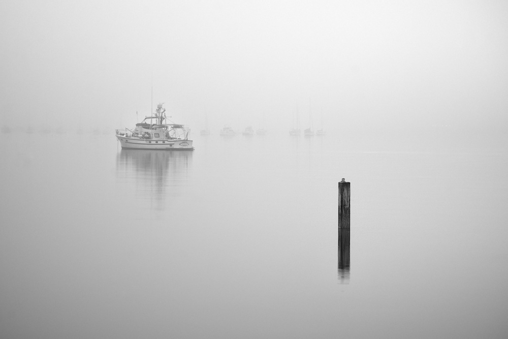 The Foggy Harbor | Black & White Gallery