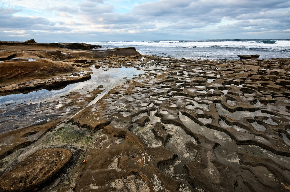 Tide Pools, La Jolla, California
