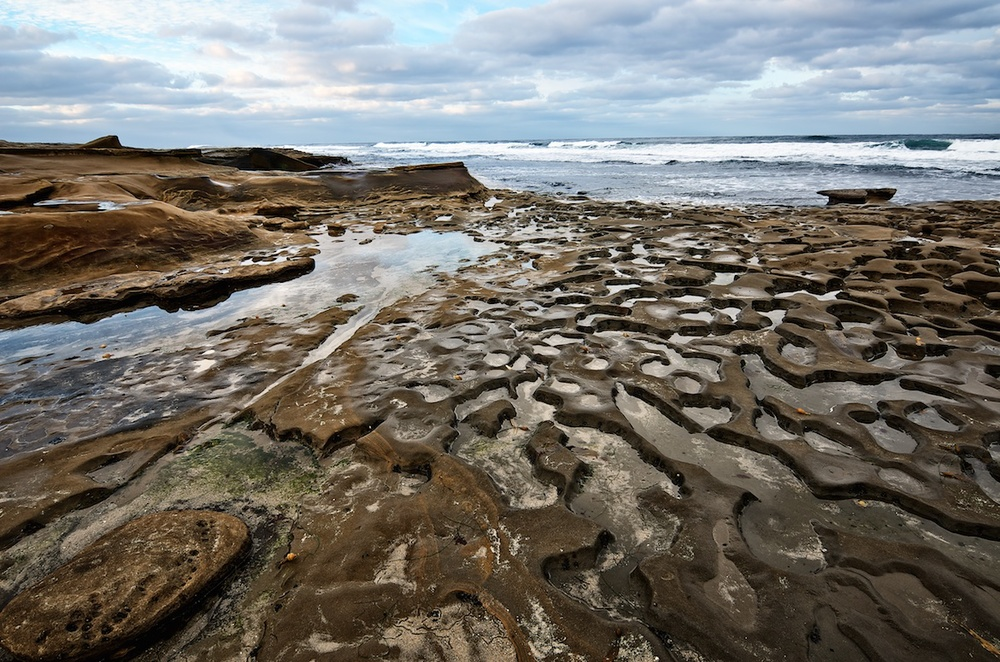 La Jolla Tide Pools, San Diego
