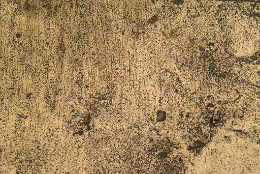 Scott-Davenport-Iberia-Texture-07.jpg