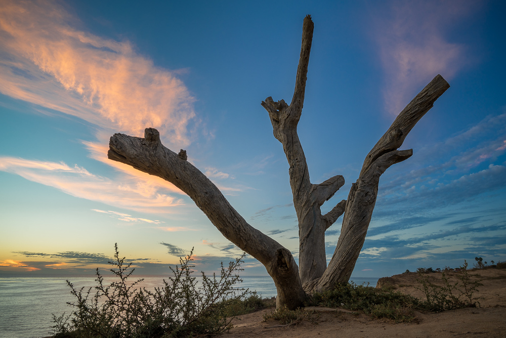 Scott-Davenport-US-California-San-Diego-Sunset-Cliffs-2015-09-12-0035.jpg