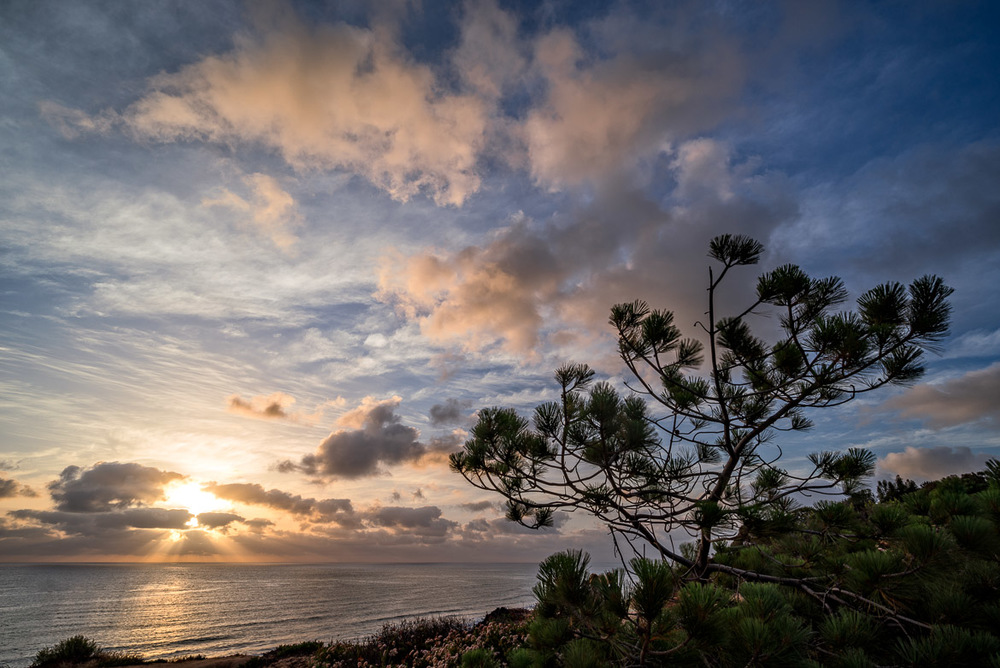 Sunset In Del Mar