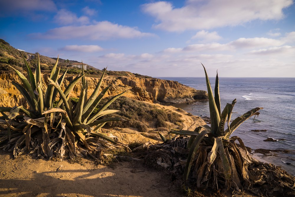 Scott-Davenport-US-California-San-Diego-2016-09-17-0005-2.jpg