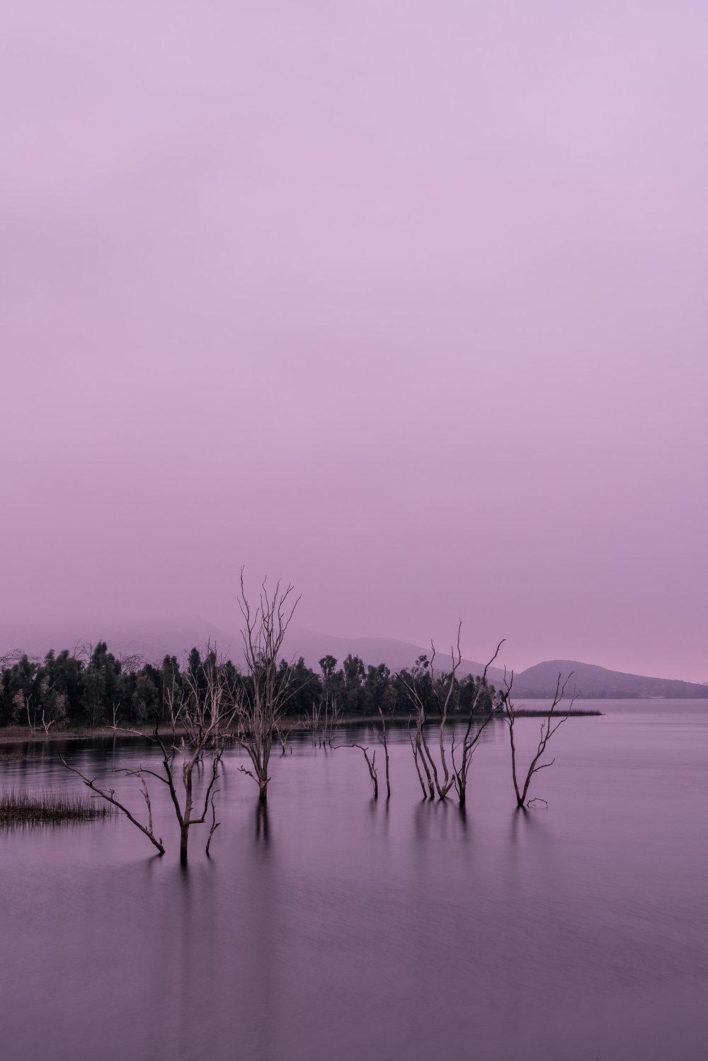 Gentle Hues At Dawn